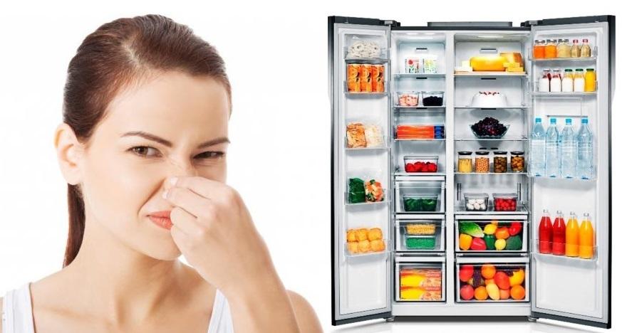 как быстро устранить запах в холодильнике