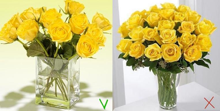 Чтобы розы простояли в вазе долго, она должна быть просторной — стебли не должны плотно касаться стенок емкости или друг друга
