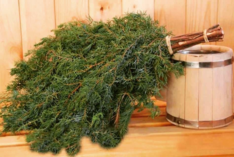 Запарить можжевеловый веник для бани нужно в горячей воде и выдержать не меньше 15 минут