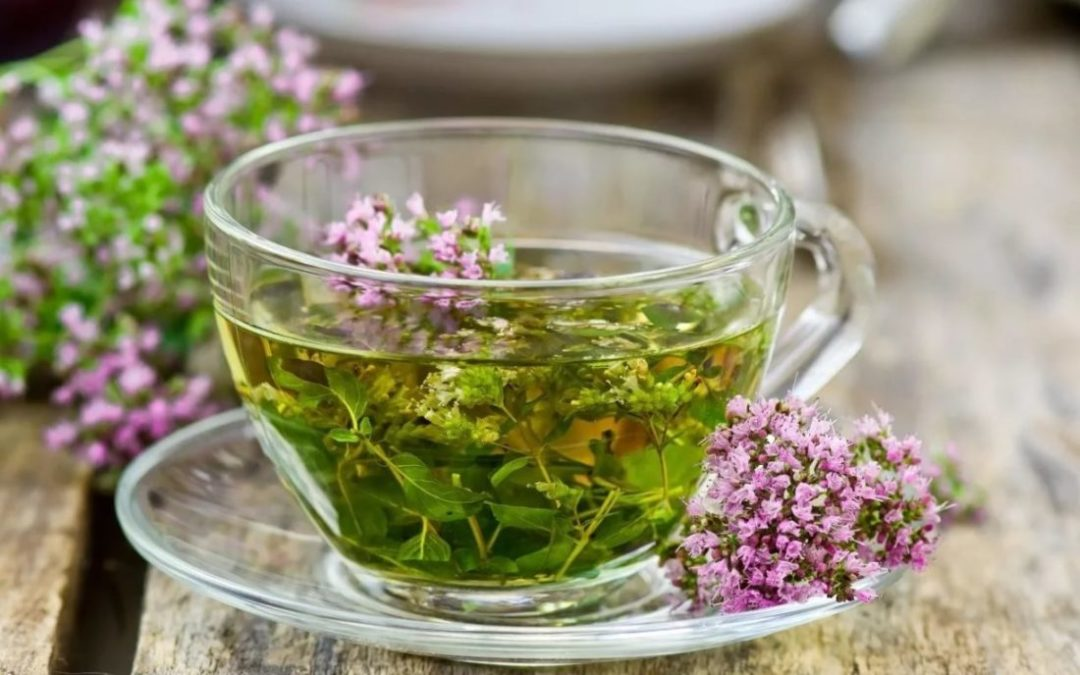 Чай с тимьяном укрепляет сопротивляемость организма к простудным заболеваниям. Заваривать можно и свежую и сухую траву