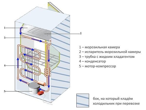 На картинке показан рабочий бок для укладки
