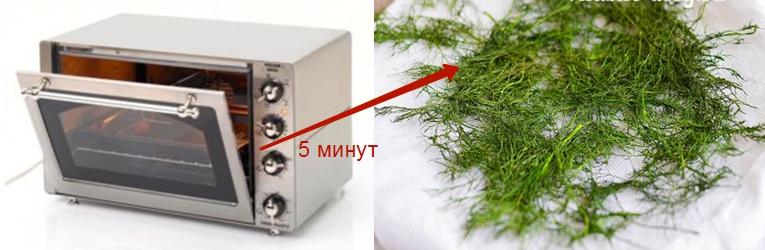 Емкость с разложенным укропом в один слой помещают в микроволновку на 5 минут. Для первого раза после 2 минут проверяйте через каждые 30 секунд