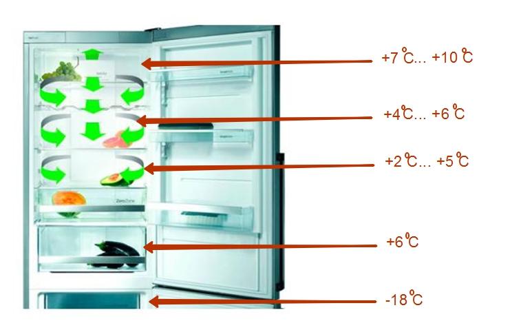 Температура внутри холодильника на разных полках — +2…+10 °C