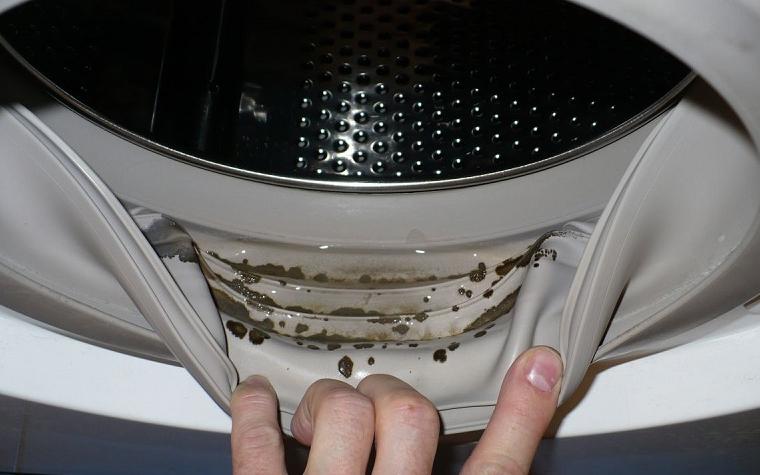 Вот что вы можете обнаружить под резинкой стиральной машины, которая на первый взгляд выглядит хорошо