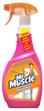 Средство для мытья стекол Мистер Мускул — не оставляет разводов. Средняя цена — от 280 ₽