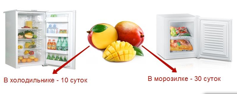 Максимальный срок хранения созревшего манго — в холодильнике при температуре не выше +15 °C — около 10 дней, в морозилке — до 30 дней
