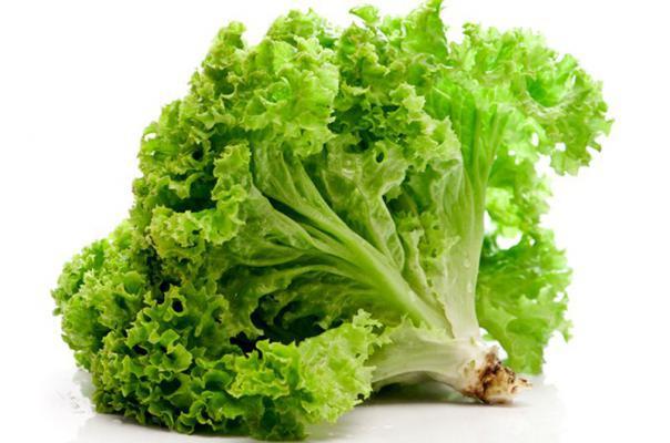 Для длительного хранения выбирайте листья салата в кочане, без повреждений