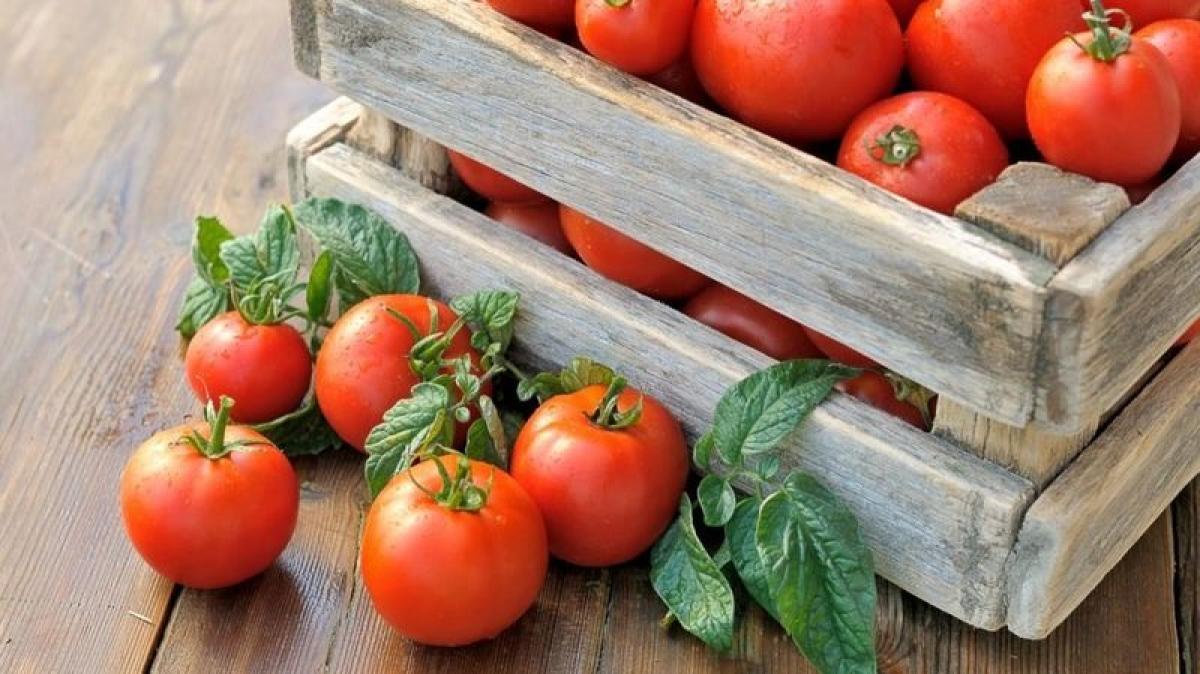 Если на томатах оставить зеленые хвостики, они будут храниться дольше