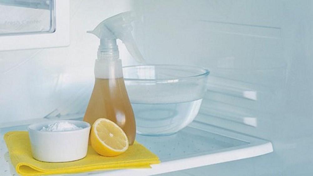 Как устранить запах в морозильной камере холодильника