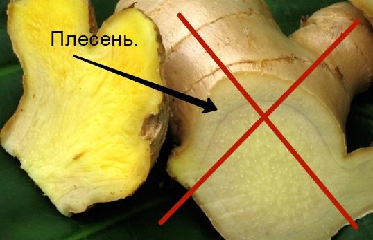 Не используйте имбирь со следами плесени, неприятным запахом или пятнами. Если имбирь покрылся трещинками — значит, он испортился, и в нём появились токсичные опасные для здоровья вещества