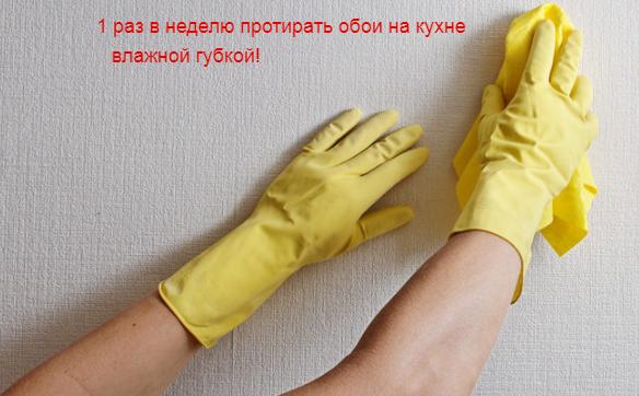 Грязь на кухонных обоях — неизбежность. Но чтобы не допускать сильных загрязнений, нужно 1–2 раза в неделю протирать их влажной тряпкой или губкой