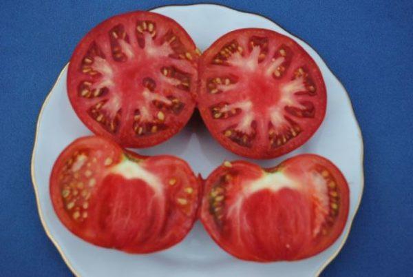 У помидора много мелких и твердых семян, не все агрегаты способны их молоть