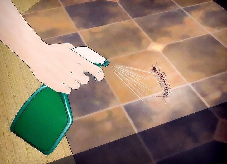 Живут многоножки в ванной или уборной, поэтому обрабатывать нужно в первую очередь эти помещения